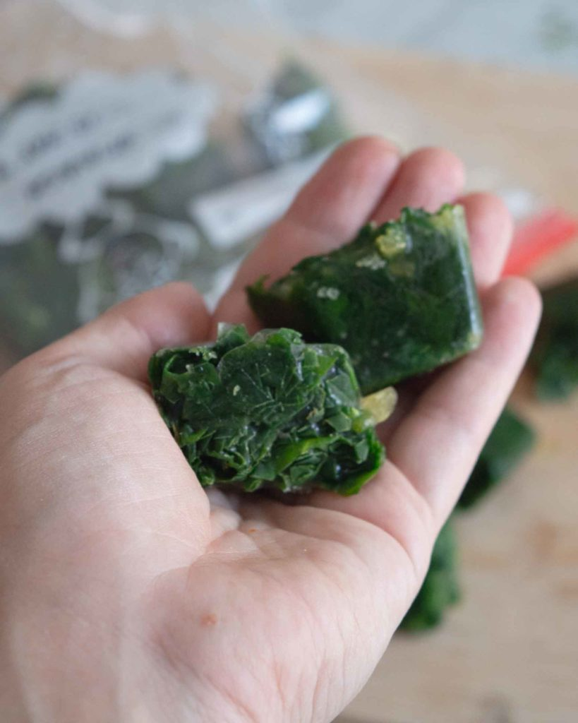 frozen spinach cubes in hand close up